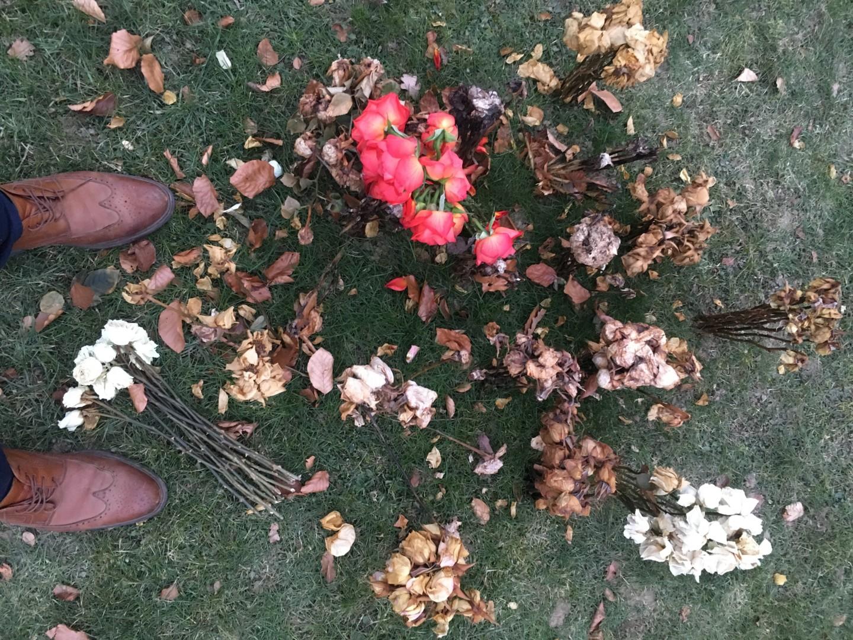Paul Yves Poumay - cimetière de roses