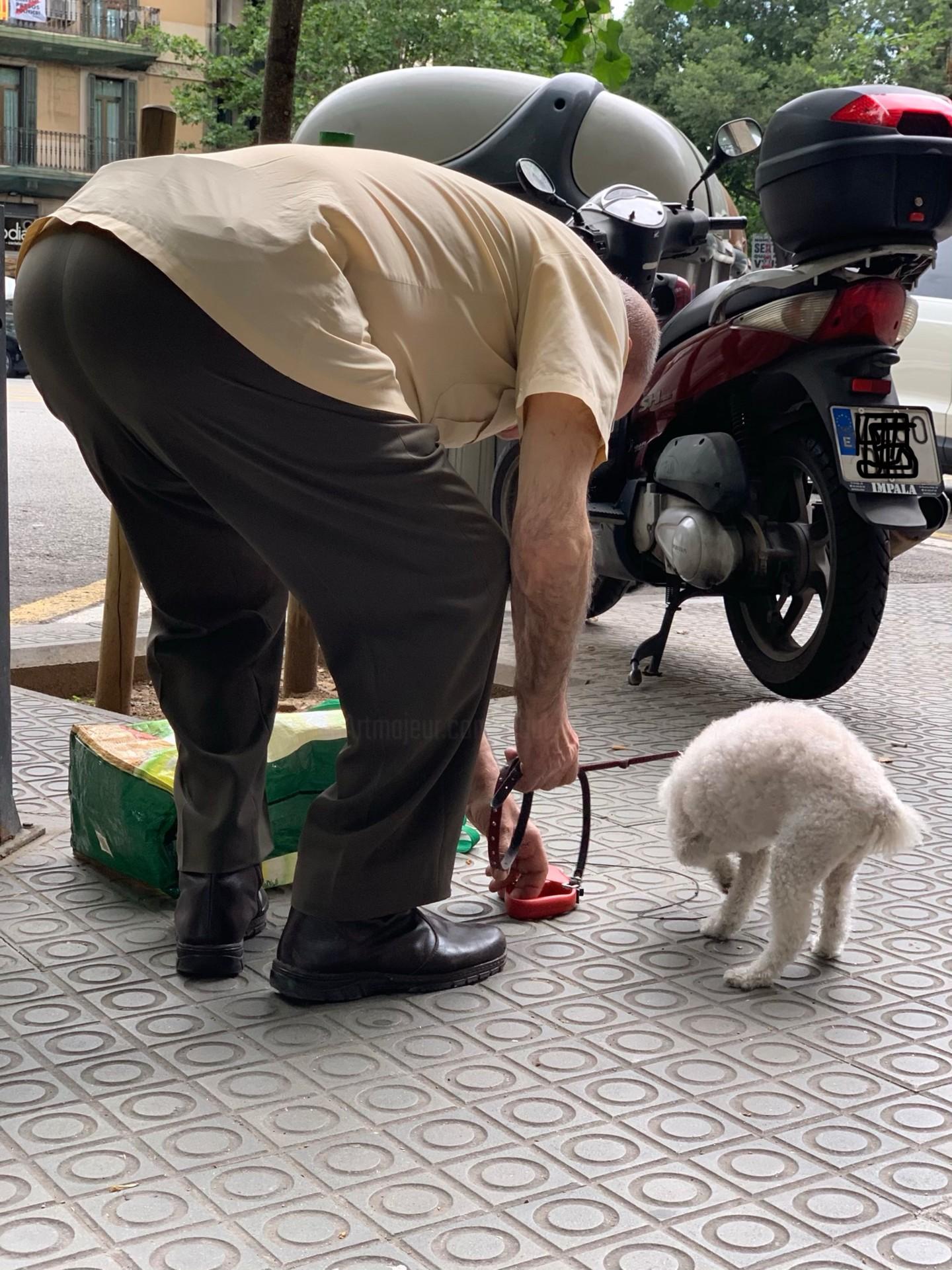 Paul Yves Poumay - l'homme et son chien
